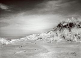 BW fine art print from infrared digital photo